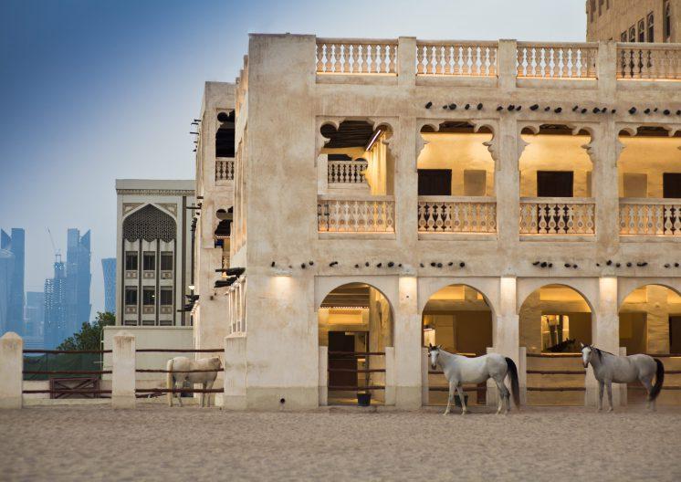 Horse standing at Souq Wakif Doha Qatar